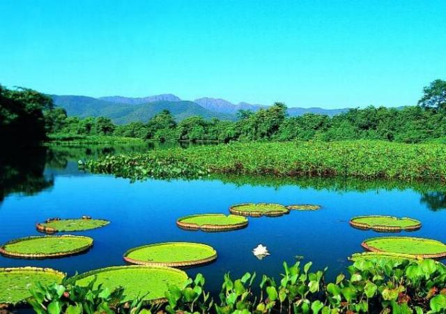 Feira internacional ajuda a divulgar destinos do Mato Grosso