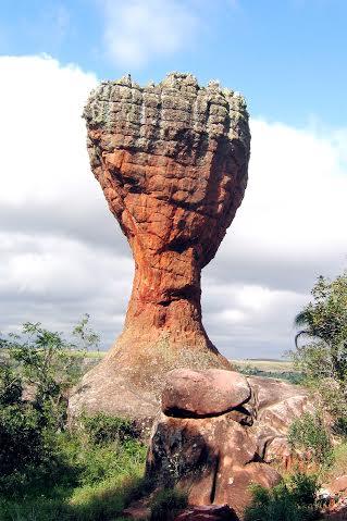 Taça, Parque Estadual de Vila Velha (Foto: Irineu Portela PMPG/UEPG/SESI)