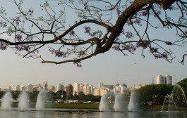 São Paulo é o destino preferido pelos brasileiros que viajam de avião na Páscoa