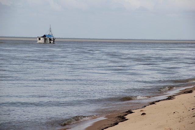 Em 1990, através de Lei Municipal, a Ilha de Cotijuba foi transformada em Área de Proteção Ambiental, fato que obriga a preservação de seus ecossistemas (Foto: DT)