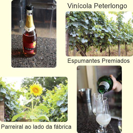 Montagem com imagens da vinícola Peterlongo.