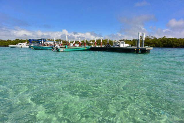 Ilha Isabela, no Equador. (Foto: divulgação)
