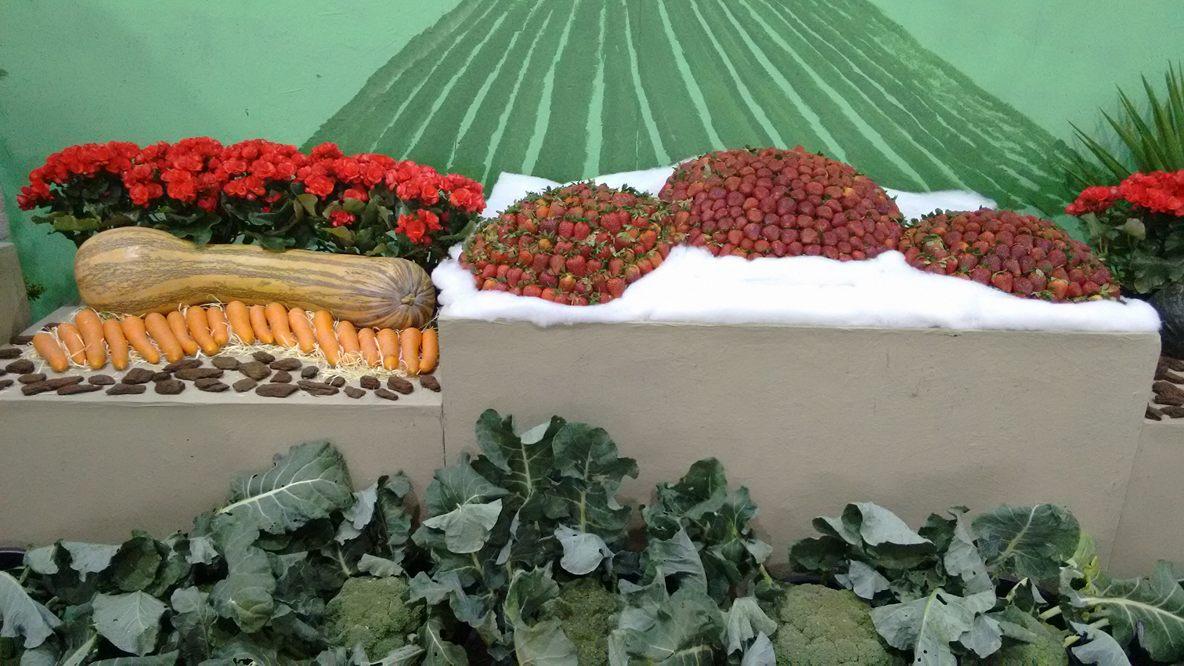 Decoração com flores e frutas durante a 36ª Festa das Flores e do Morango