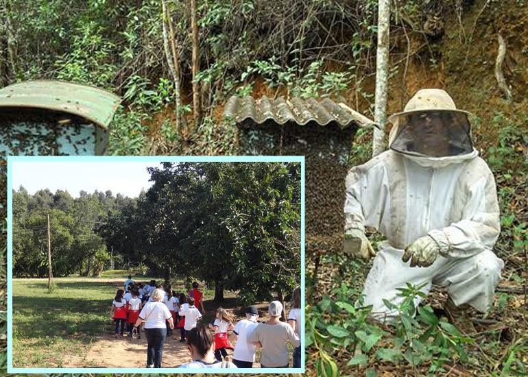 O apiário faz parte do Circuito das Frutas e oferece também Turismo Pedagógico