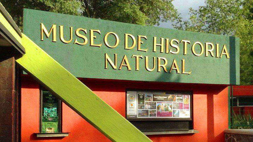 museo-de-historia-natural-y-cultura-ambiental