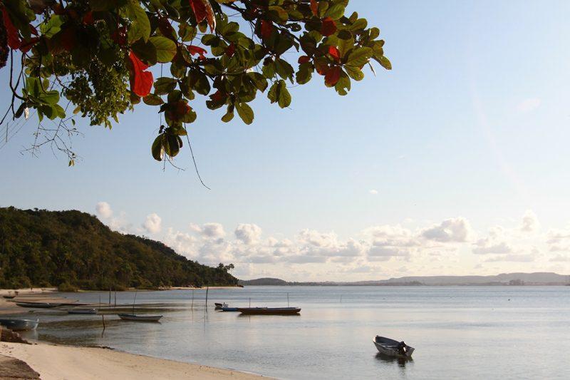 Bandeira Azul pode atestar qualidade de praias na Bahia