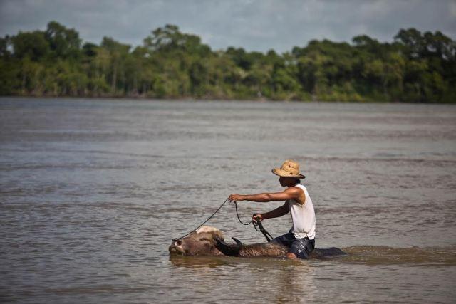 Marajó, Pará (Foto: divulgação)