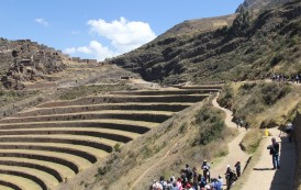 Terraços de cultivo em Pisac