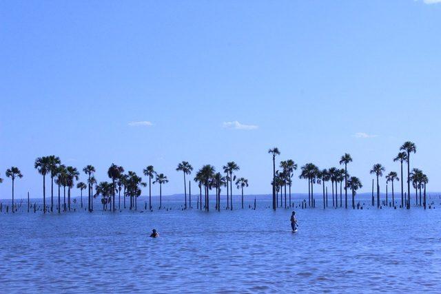 Praia dos Buritis (Foto: Tárcia Oreste)