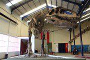 De volta ao Jurássico – Patagônia Argentina