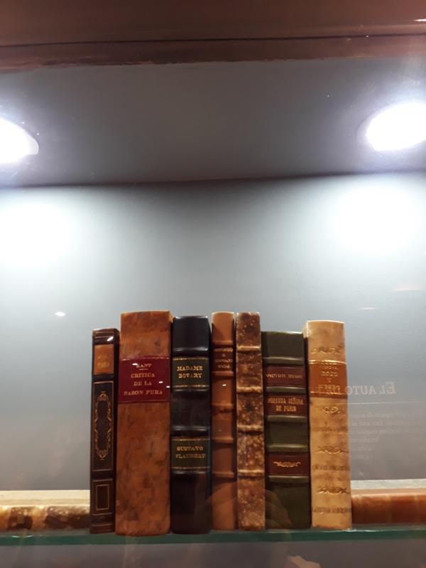"""Livros """"profanos"""" como A crítica da Razão Pura de Immanuel Kant e Madame Bovary de Gustave Flaubert eram queimados"""