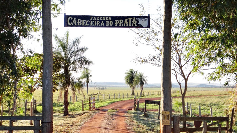 Recanto Ecológico Rio da Prata, em Jardim/MS. Empresários conseguiram unir a pecuária, o turismo e a conservação ambiental (através da Reserva Particular do Patrimônio Natural Cabeceira do Prata) - (Foto: divulgação)