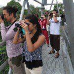Museu da Amazônia passa a integrar roteiro turístico do Estado