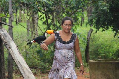 No meio do caminho, um Tucano