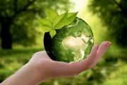 Hilton anuncia programas de redução do impacto ambiental e emissão de carbono