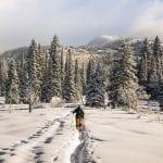 DICAS DO DIÁRIO: Seis destinos para esquiar