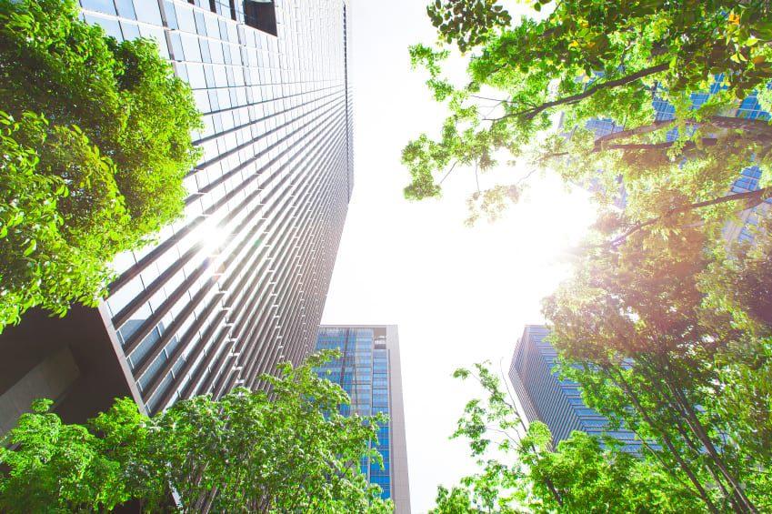 DIÁRIO lança sua editoria Sustentabilidade Corporativa