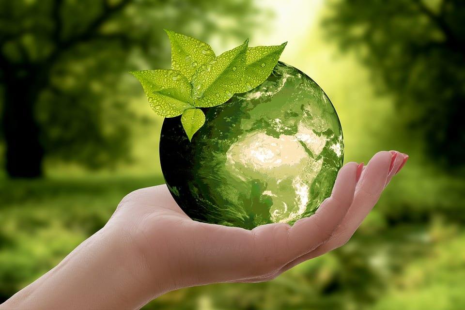 UFSCar abre inscrições em dois cursos com foco na sustentabilidade