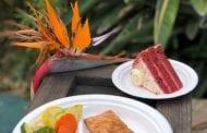 SeaWorld Parks & Entertainment remove itens de poliestireno nos restaurantes de seus 12 parques temáticos