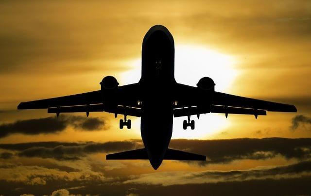 ABEAR estimula trabalho de prevenção de ocorrências de colisão de pássaros com aeronaves; saiba mais