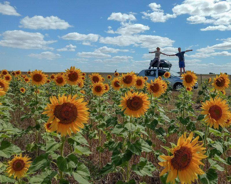 Jornalistas brasileiros que estão viajando pela América de carro começam a explorar o Chile